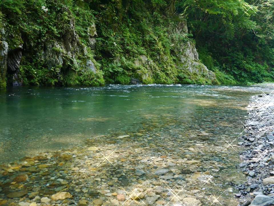 ここが東京!?大自然の中でマイナスイオンを浴びよう!等々力渓谷パワースポットウォーキングコン!