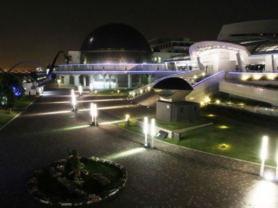 ライトアップされた幻想的なイルカのショーを満喫!名古屋水族館ナイトウォーキングコン!