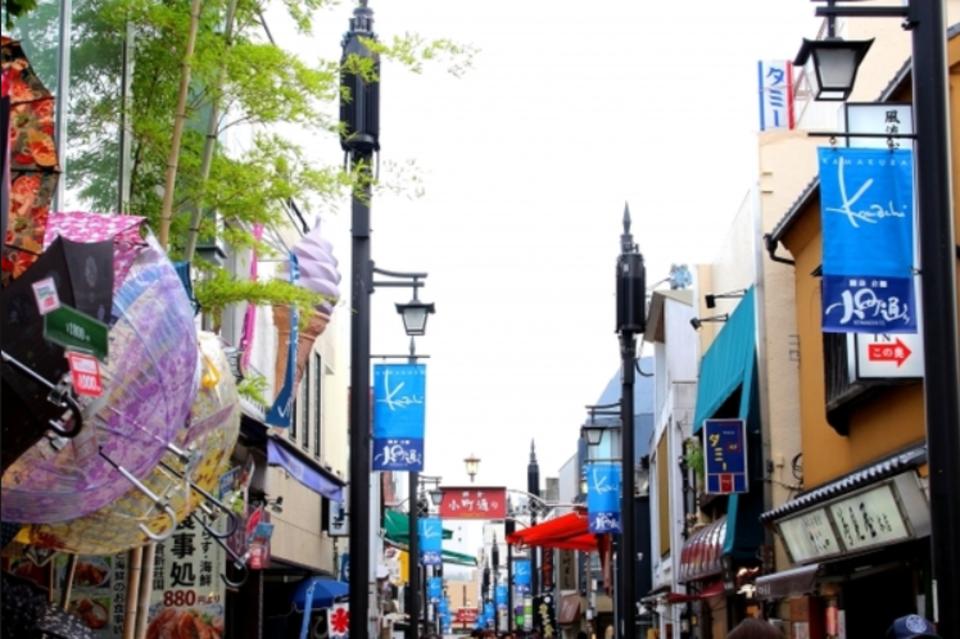 【動物が好きな人限定】 鎌倉ウォーキングコン☆ 歴史と風情が溢れる街を散策して男女の仲を深めよう♡