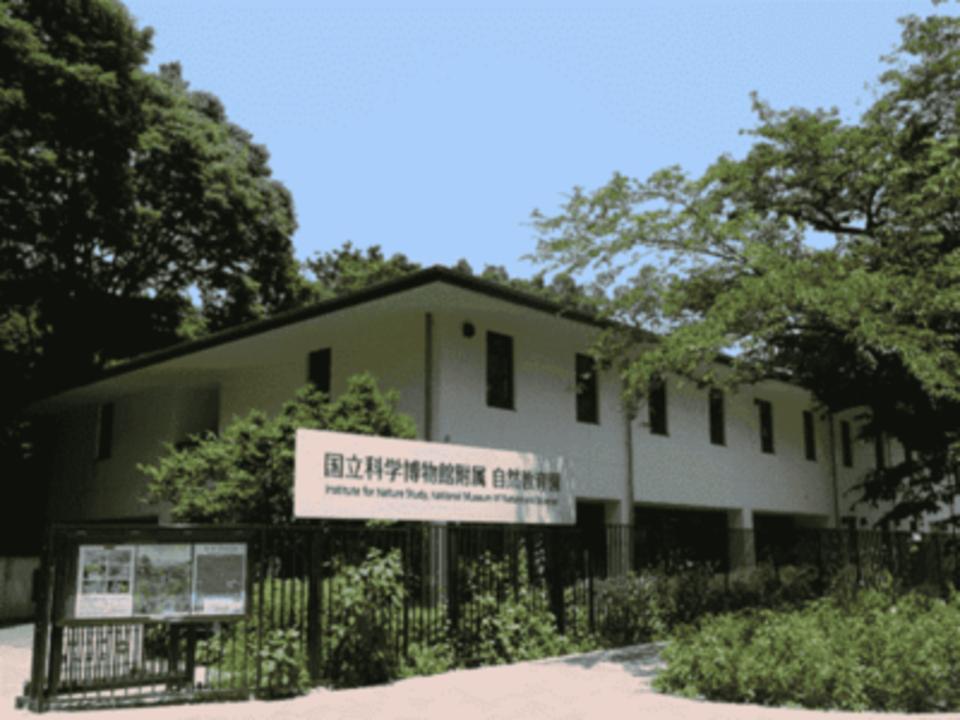 まるでジブリの世界に来たような気分♡ 目黒自然教育園ウォーキングコン☆ 都心にあるオアシスで爽快に出会いましょう♡