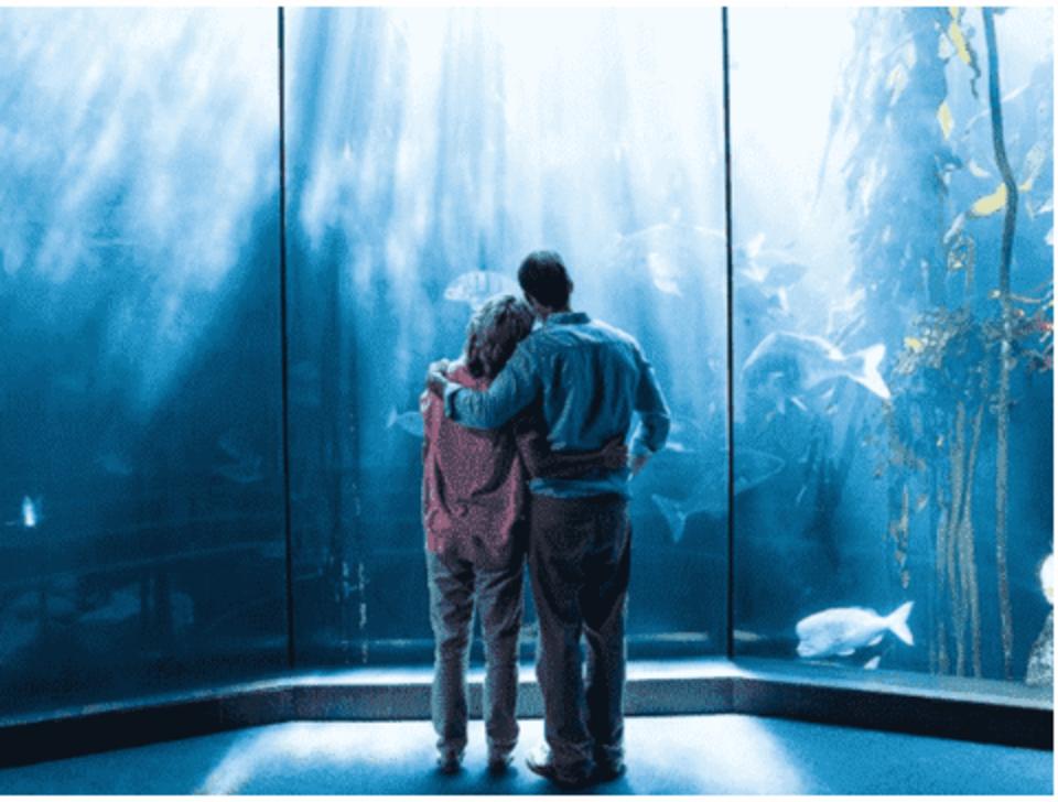 【身長160㎝以上女性限定企画】 都会の真ん中の水族館でデートを楽しめる♪ 池袋サンシャイン水族館コン☆ アクセス抜群!イベント後も見る所がたくさんあります♡