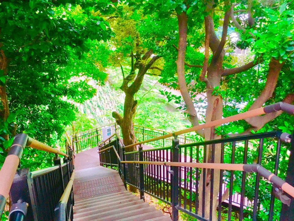 幻想的ナイトガーデン!日本庭園ライトアップ♡超穴場の大人の街★紀尾井町ナイトデートコン♪【紀尾井町】