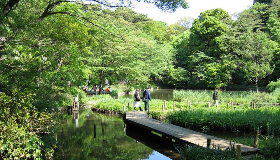 都会の中のオアシスでお散歩!大自然ただよう目黒植物園ウォーキングコン!