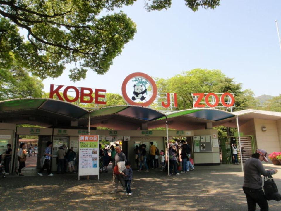 20代男女限定&王子動物園散策コース