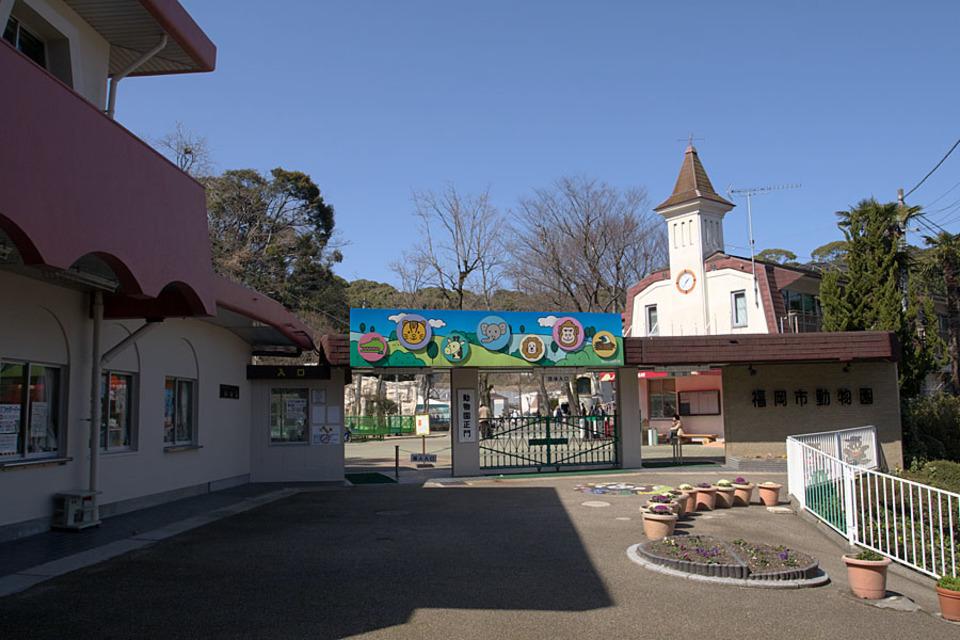 開催中止!動物たちに癒されよう!福岡市動植物園ウォーキングコン!
