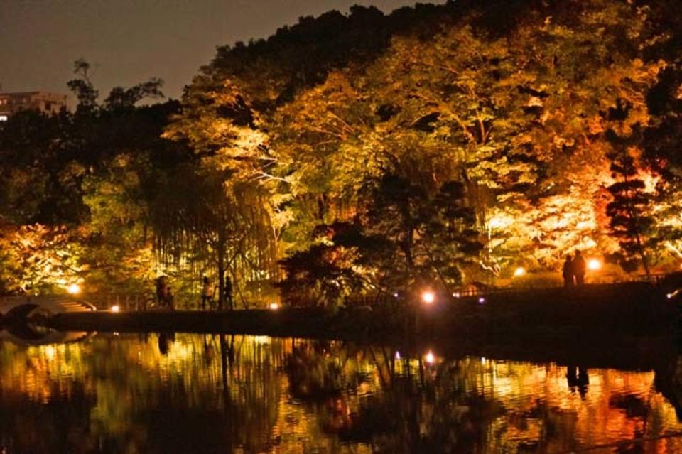 期間限定!幻想的な景色を一緒に見よう!名古屋庭園!紅葉ライトアップウォーキングコン!