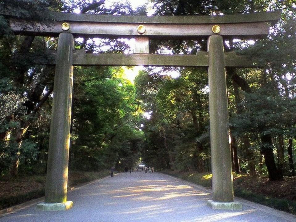 男性満員!女性急募!初詣!明治神宮で初詣で!!東京パワースポットウォーキングコン!