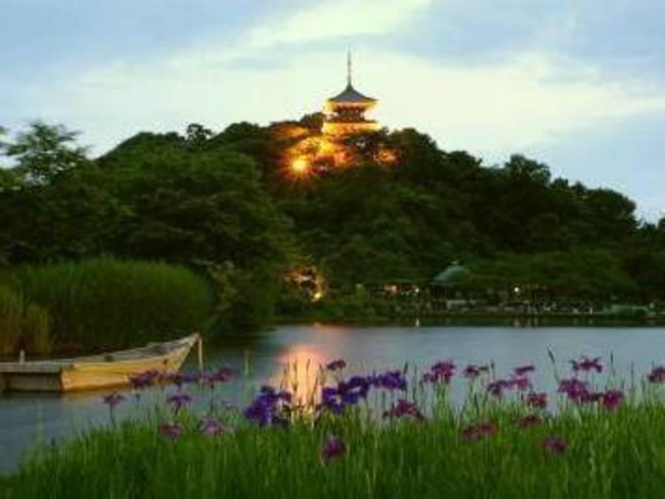 開催中止になります!!観桜の夕べ♪♪ ライトアップ三渓園~散策ウォーキングコン!