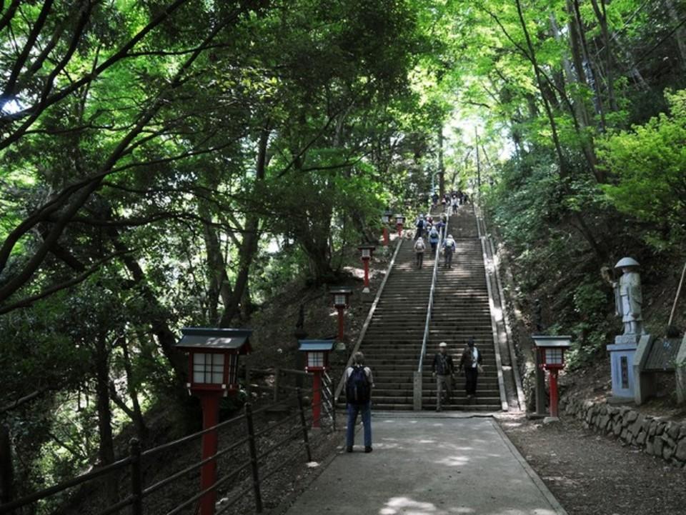 ストレス発散!気軽に行ける高尾山に行こう!!高尾山ウォーキングコン!