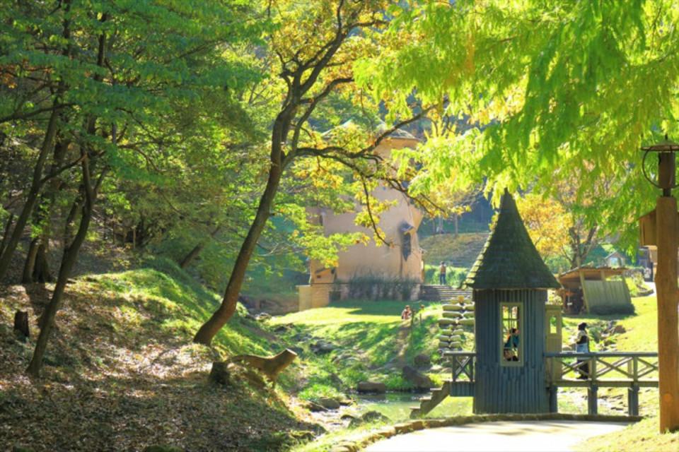 女性満席!人気アニメの世界観を楽しもう!!森林浴&湖を眺めるセラピーウォーキングコン!