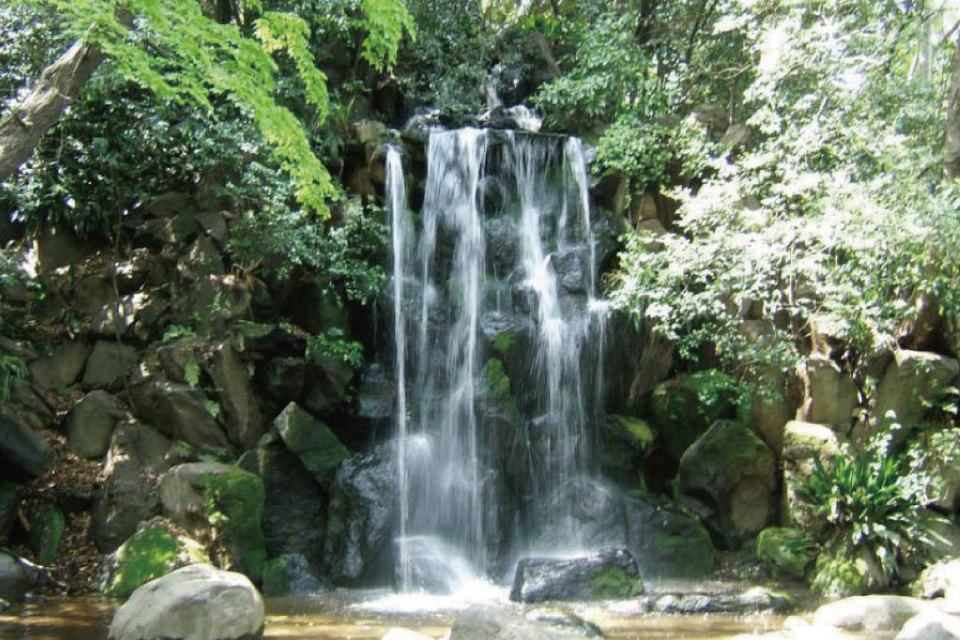 開催中止になります!!ここが東京!?大自然の中でマイナスイオンを浴びよう!等々力渓谷パワースポットウォーキングコン!