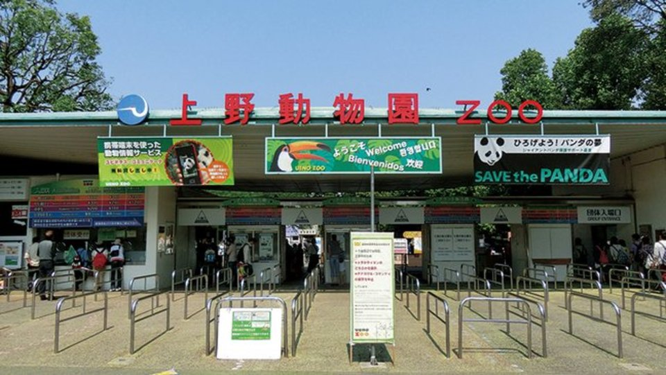 上野でパンダが待ってる☆動物園でグループ散策♪動物園コンin上野動物園【大人世代中心】